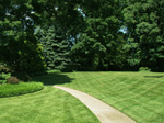 Maryland Lawn Seeding Service